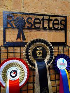 Rosette display hanger